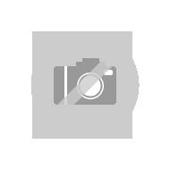 Moosgummi D-profil SK 21x17 mm
